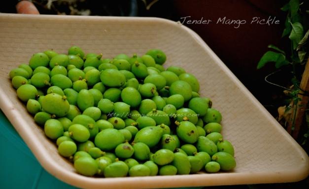Kanni Manga Achar/Tnder mango pickle